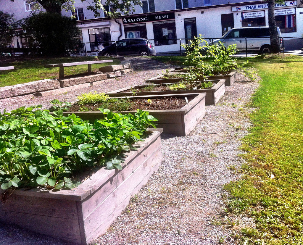 Hökarängen's residents are invited to collect herbs from the side of the pedestrian street on their way home.
